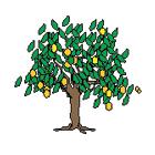 Fruticola--Potrerito-00-valoraccion