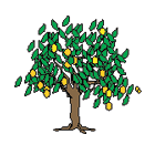 Cliente Fruticola Potrerito   VALORacción
